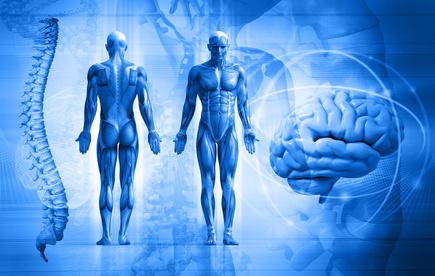 Mišićni oklop – kako uz pomoć tela potiskujemo emocije